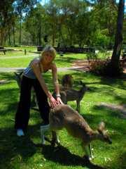 australia200943