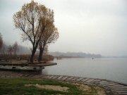lago-di-montorfano-particolare-23