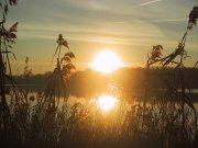lago-di-montorfano-particolare-25