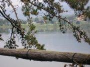 lago-di-montorfano-particolare